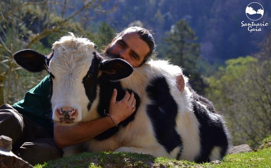 Veganismo Samuel Coque Santuario Gaia