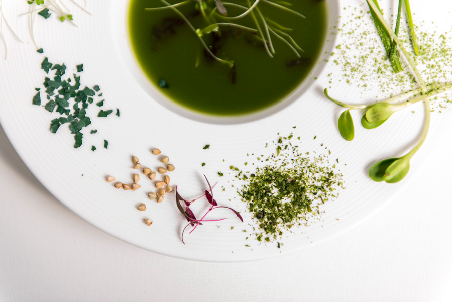 green-plato-closeup