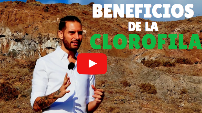 ver video sobre la clorofila
